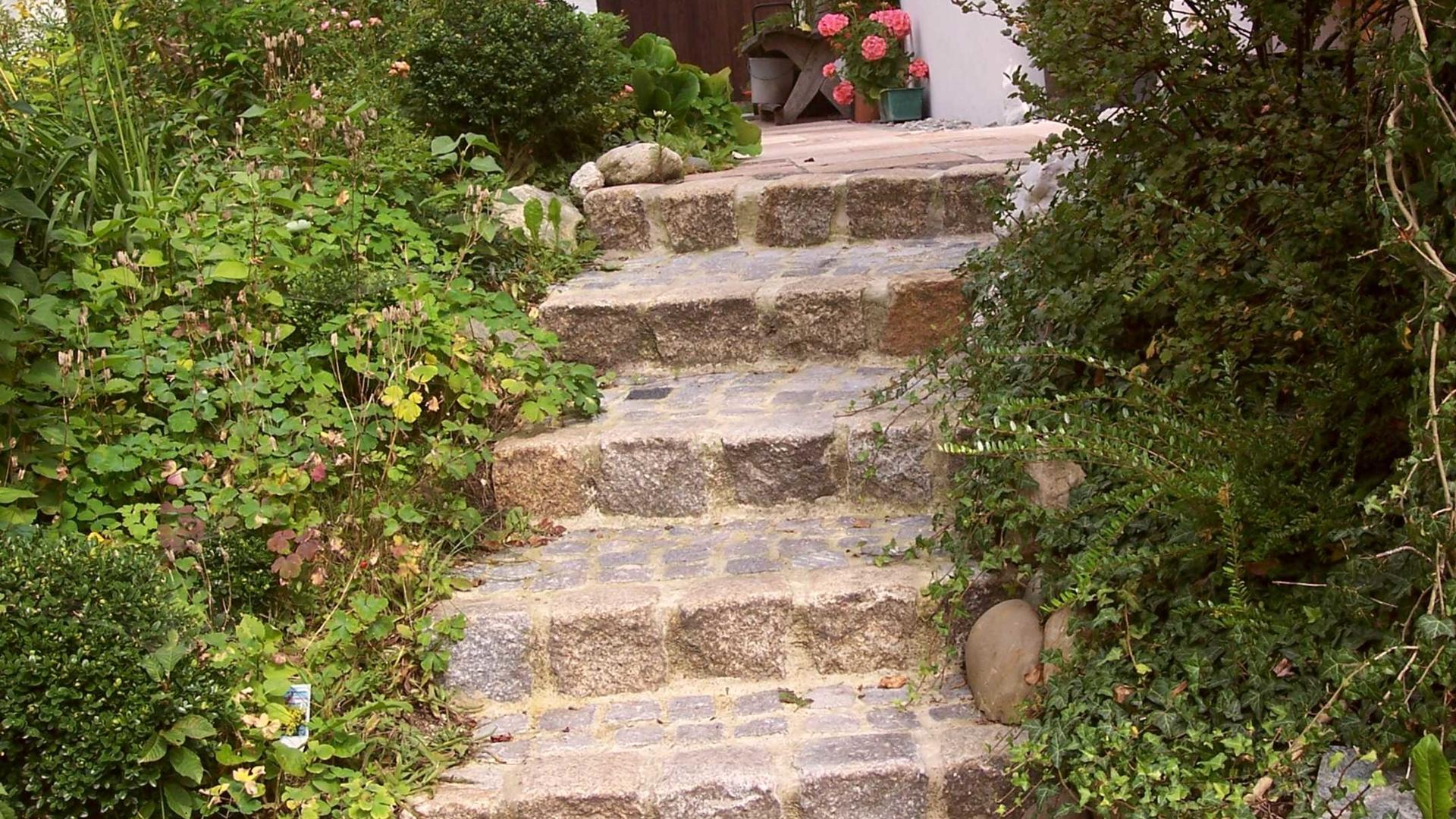 Stufen Steil 1
