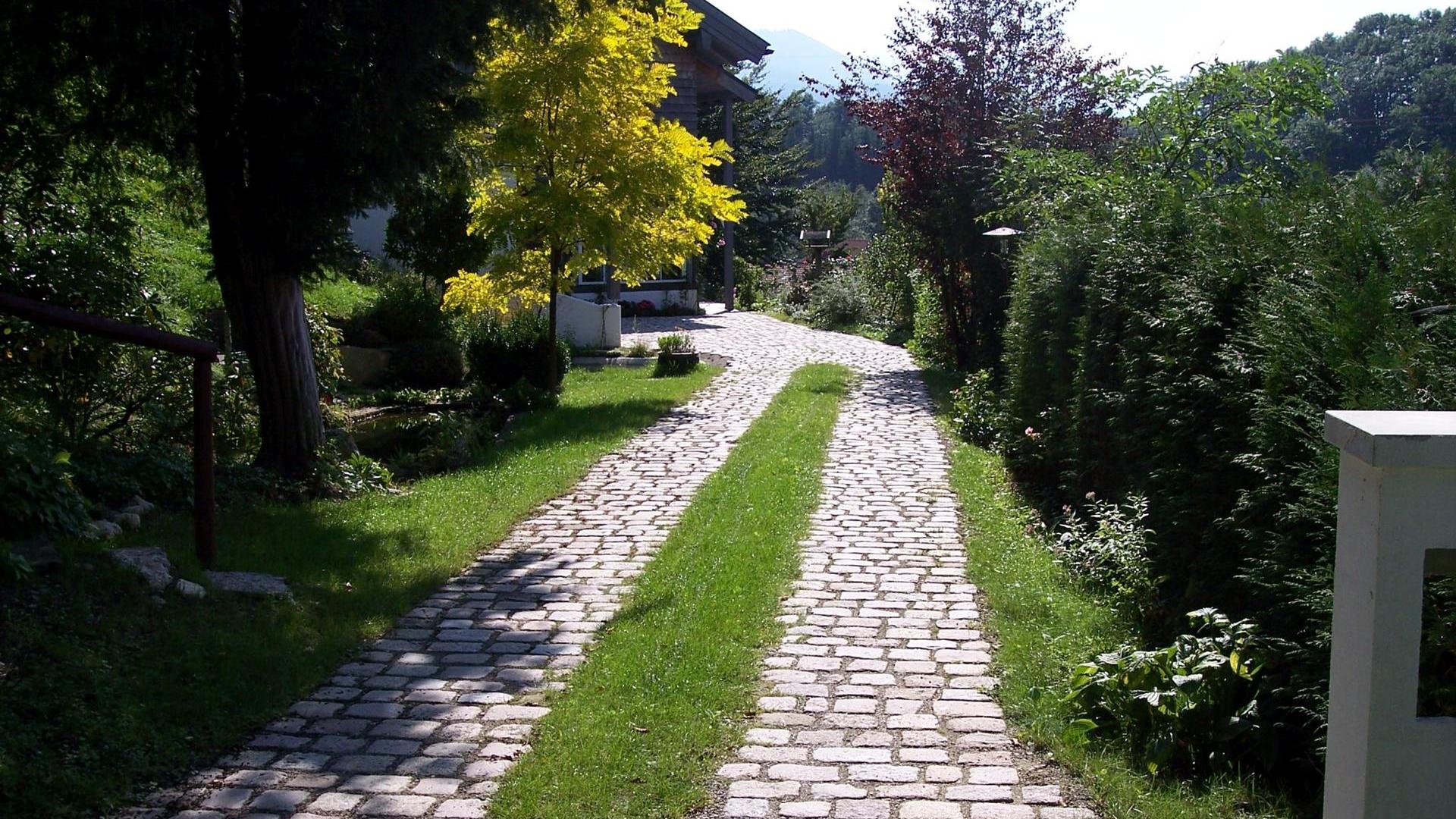 Waldweg Stein